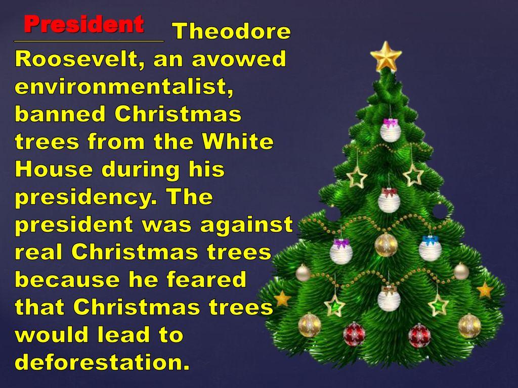 Which President Banned Christmas Trees From The White House.Christmas Tree The Wonder Interaktivnaya Lekciya Viktorina