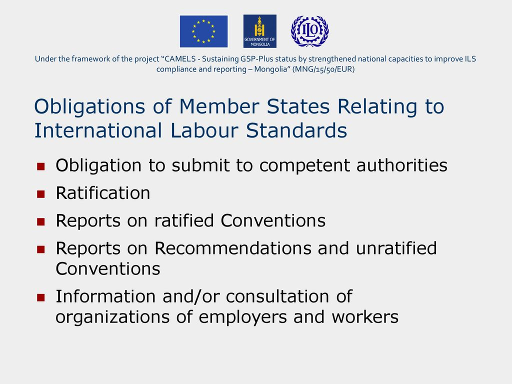 Overview of standards-related obligations and reporting by
