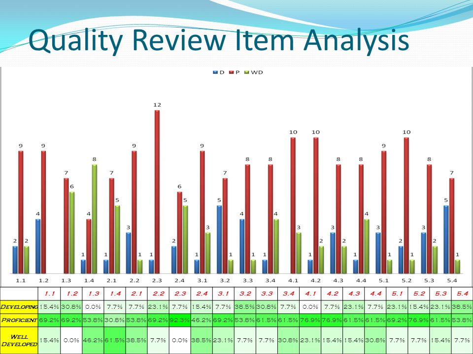 Quality Review Item Analysis