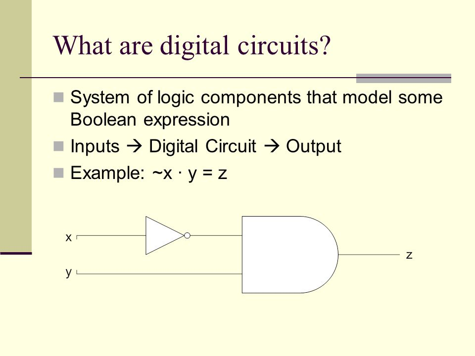 What are digital circuits
