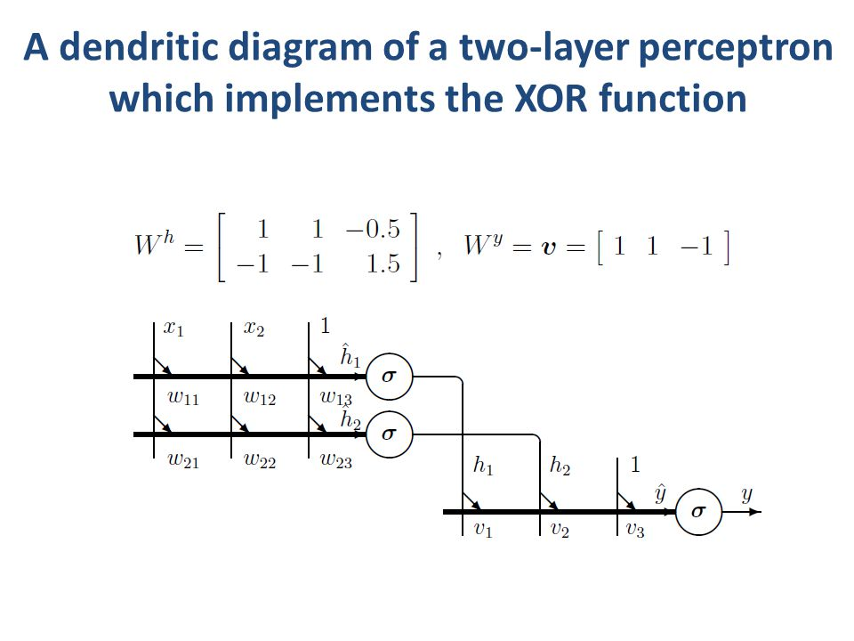 A dendritic diagram of a two-layer perceptron which implements the XOR function