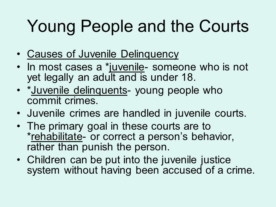 Young People and the Courts