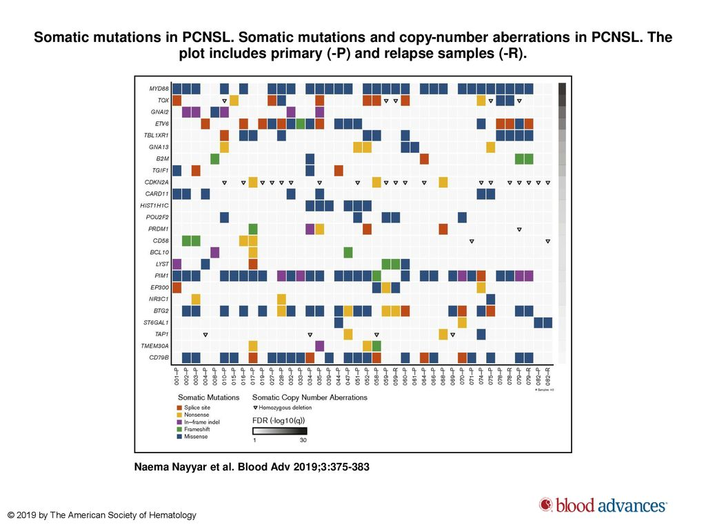 MYD88 L265P mutation and CDKN2A loss are early mutational