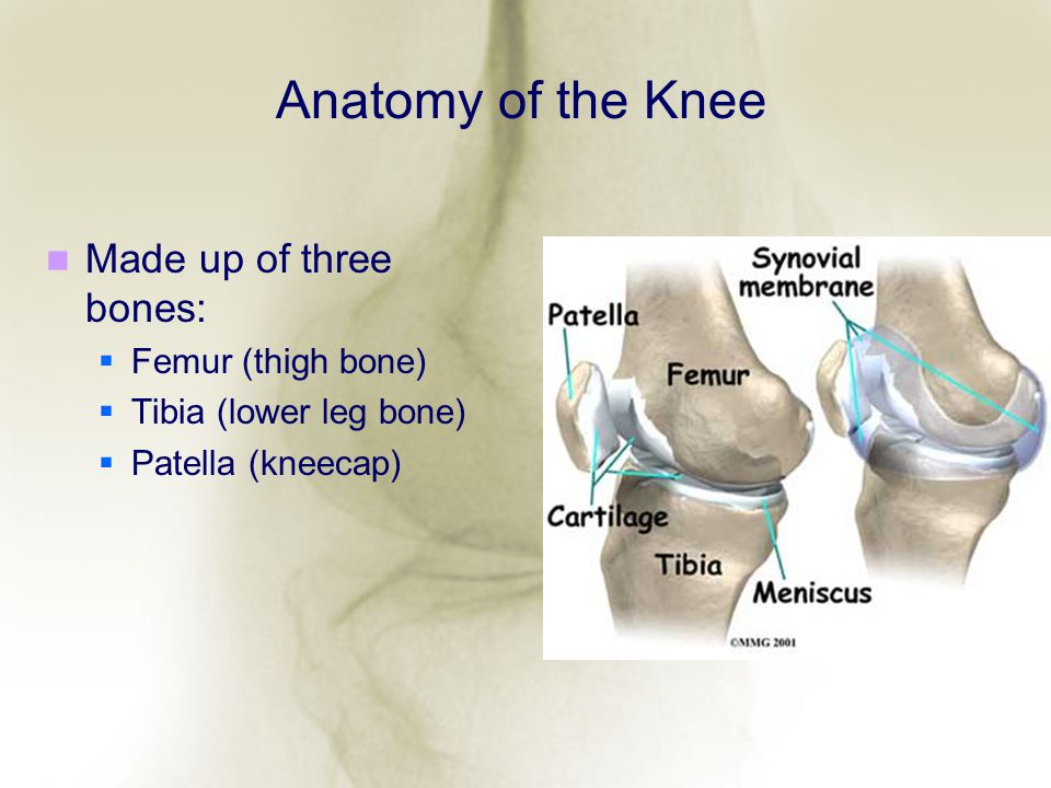 Minimally Invasive Mi Knee Replacement Is It Right For You Ppt