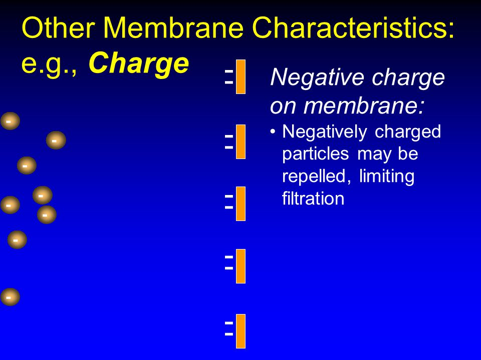 Other Membrane Characteristics: e.g., Charge