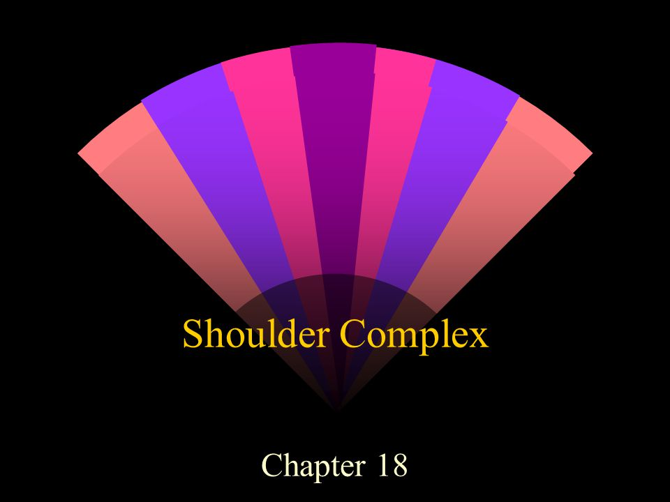 Shoulder Complex Chapter 18