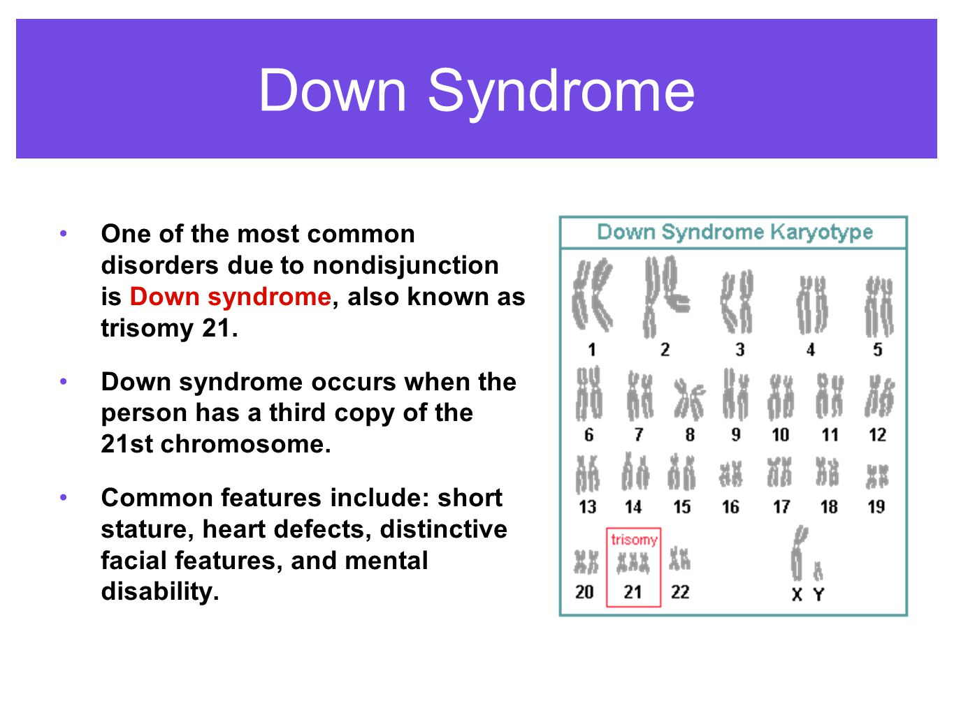 is-down-syndrome-autosomal-or-sex-linked