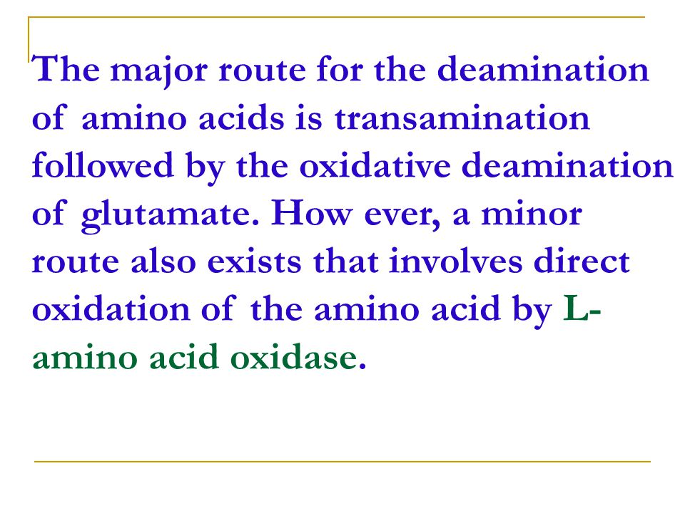 The major route for the deamination of amino acids is transamination followed by the oxidative deamination of glutamate.