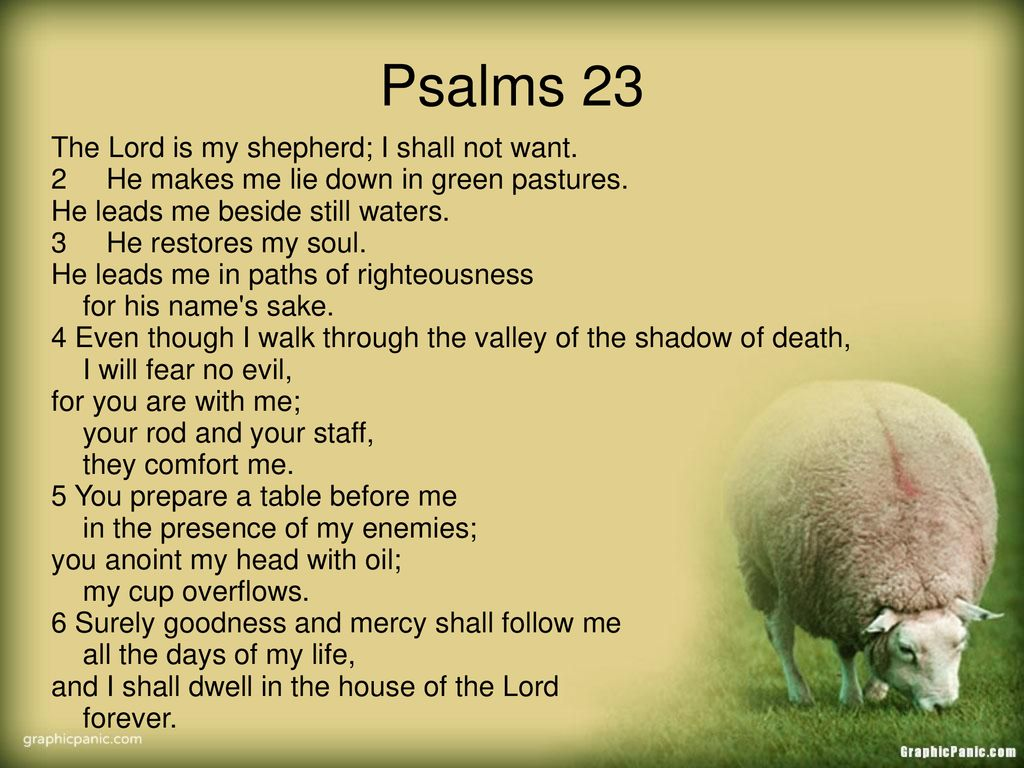 Psalms 23 The Lord Is My Shepherd I Shall Not Want Ppt Download