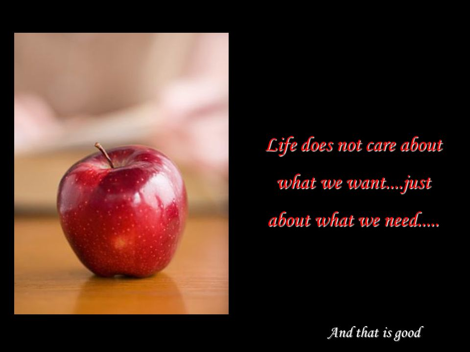 Life does not care about what we want....just about what we need.....