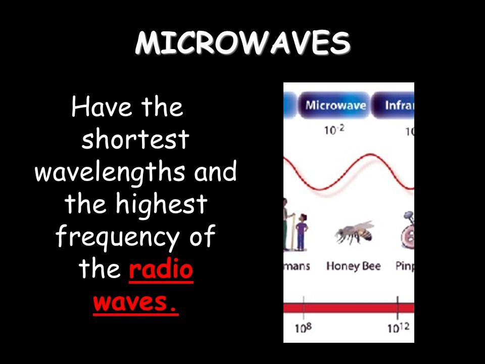MICROWAVES Have the shortest wavelengths and the highest frequency of the radio waves.