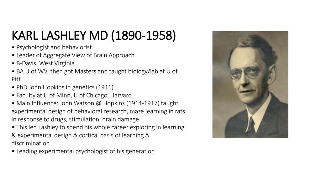 History of Neurology KARL LASHLEY PHD ( ) March 9, ppt download