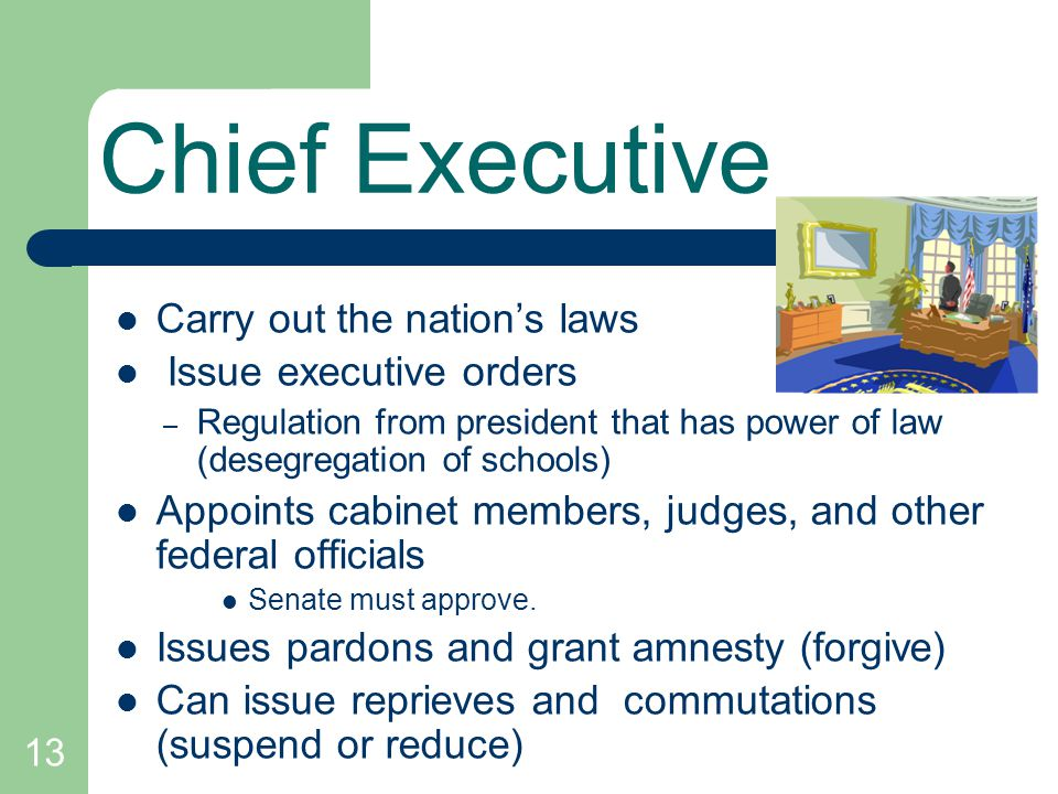 Chief Executive Carry out the nation's laws Issue executive orders