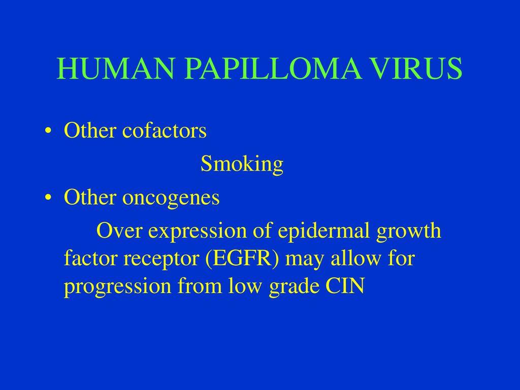 hpv vírus és dyskaryosis hogyan gyógyíthatja meg a szemölcsöket maga