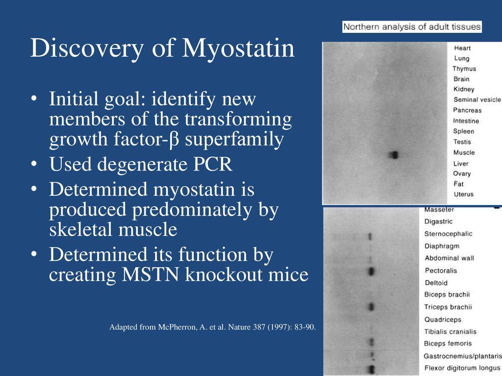 Follistatin augments the power of myostatin inhibition