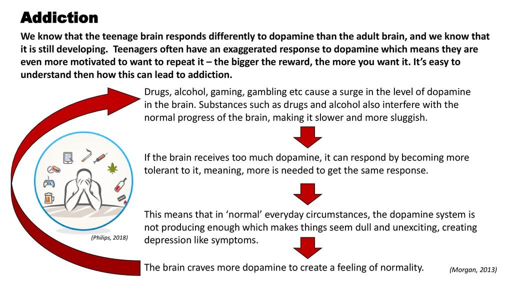 Drugs and how they affect the teenage brain - ppt download