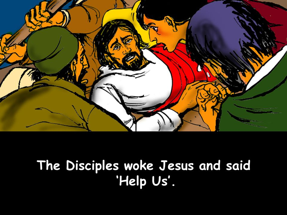 The Disciples woke Jesus and said