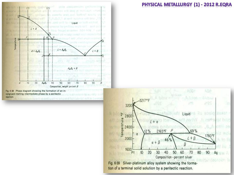 Equilibrium diagrams having intermediate phases or compounds ppt 3 physical metallurgy ccuart Image collections