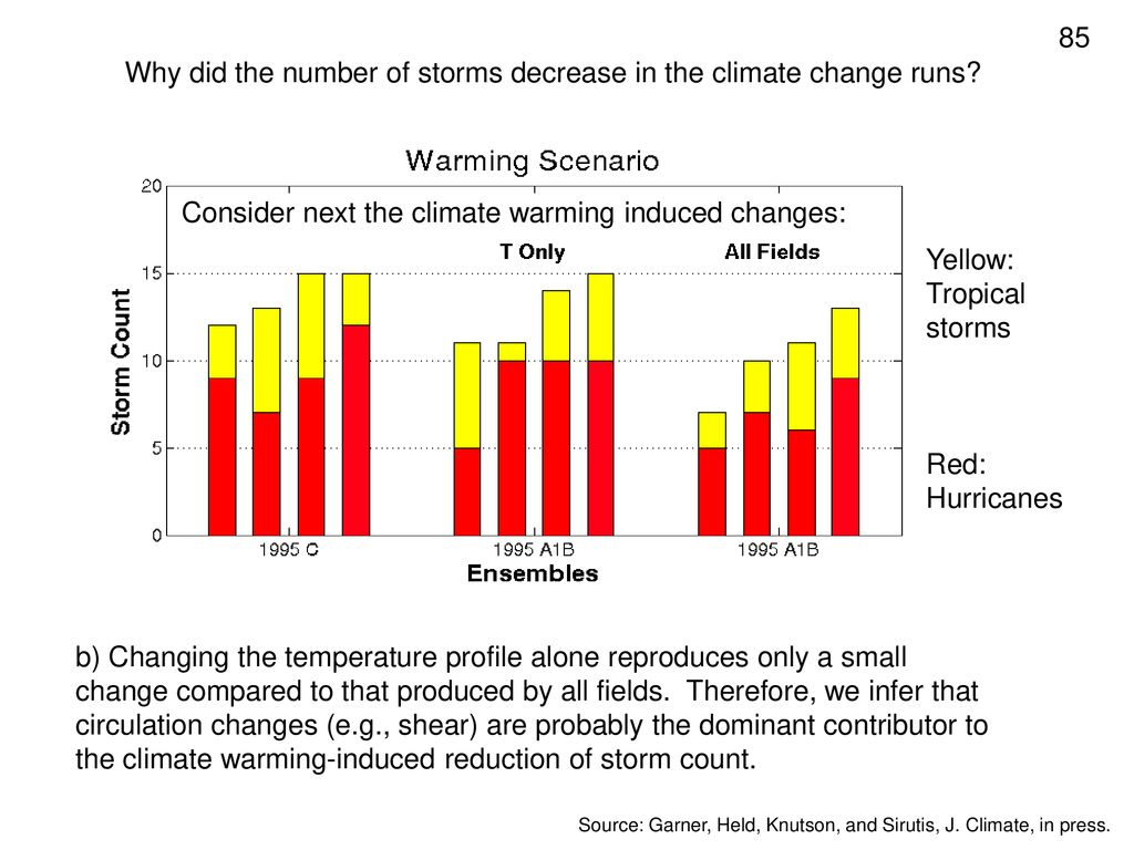 Why did the number of storms decrease in the climate change runs