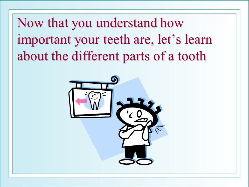 Now that you understand how important your teeth are, let's learn about the different parts of a tooth