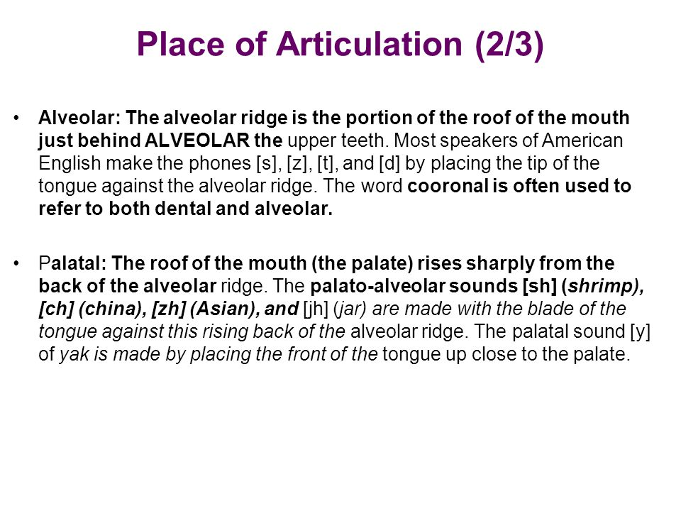 Place of Articulation (2/3)