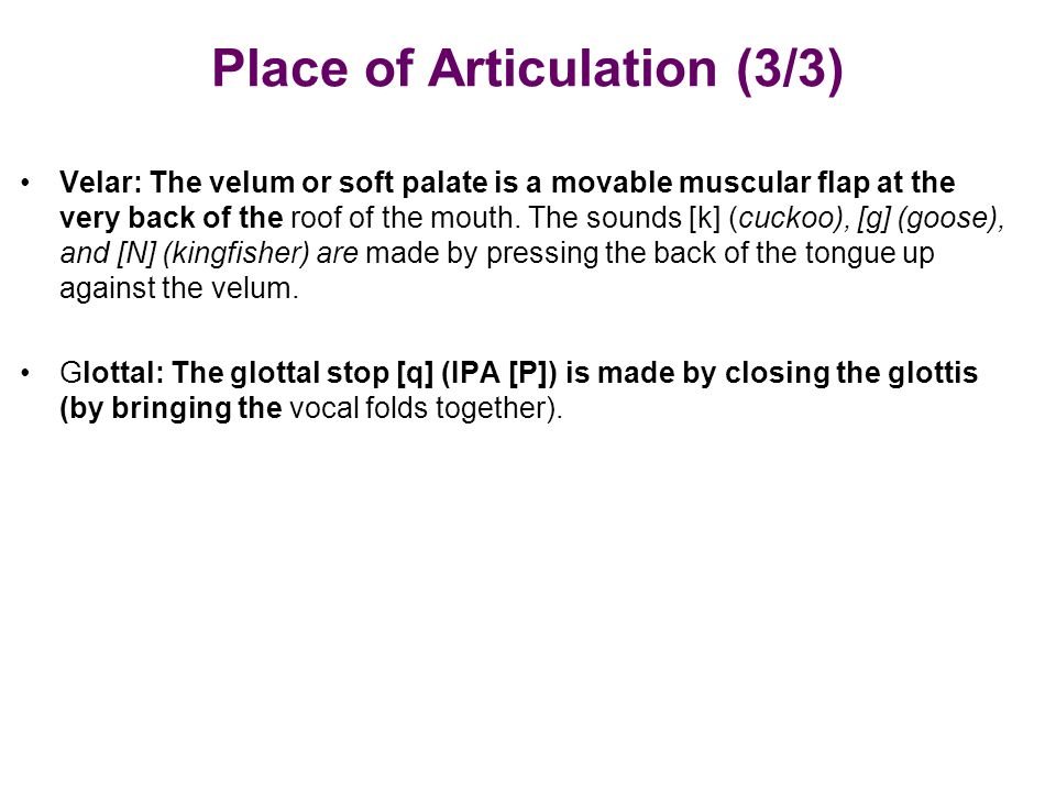 Place of Articulation (3/3)
