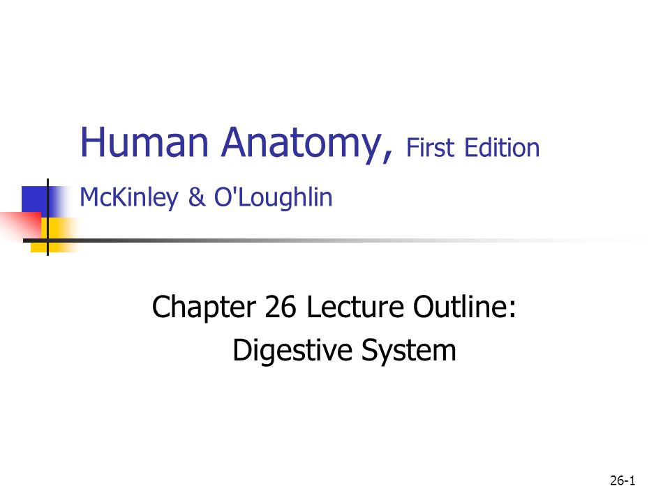 Human Anatomy, First Edition McKinley & O\'Loughlin - ppt download