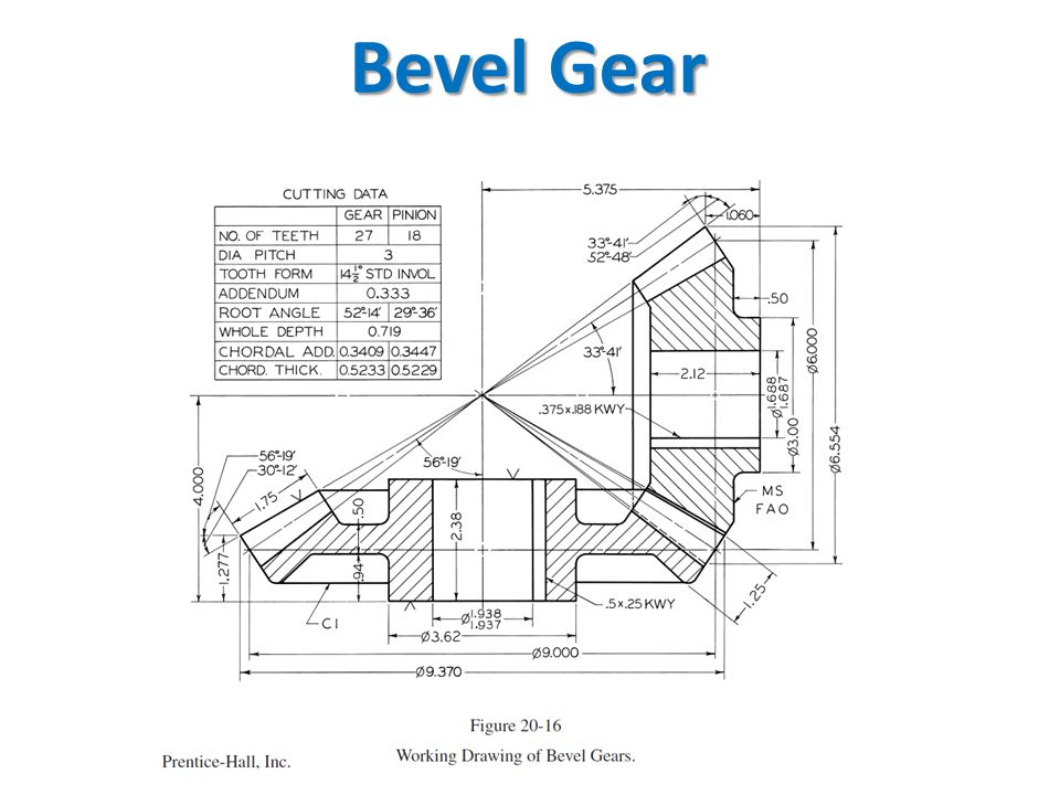 Bevel Gear Drawing Autocad Related Keywords & Suggestions
