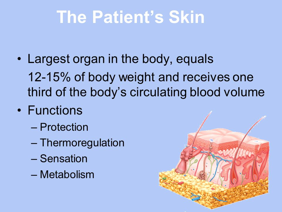 Maintaining Skin Integrity It Can Be Done Ppt Video