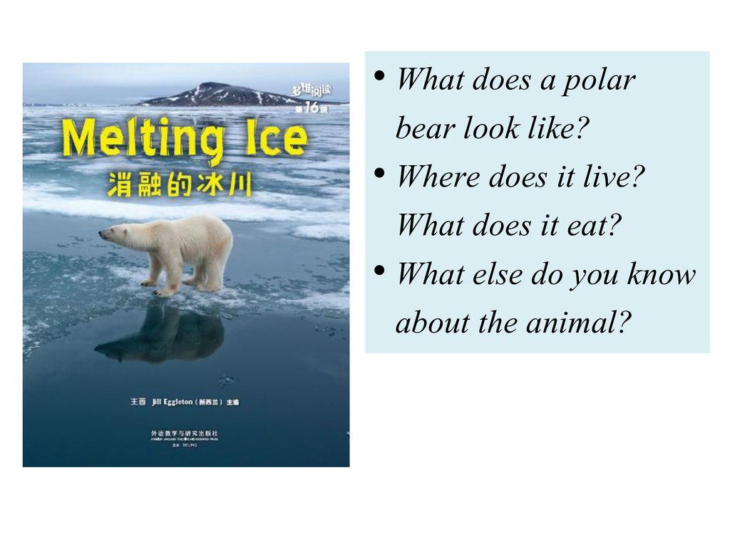 多维阅读第16级 Melting Ice 消融的冰川  - ppt download