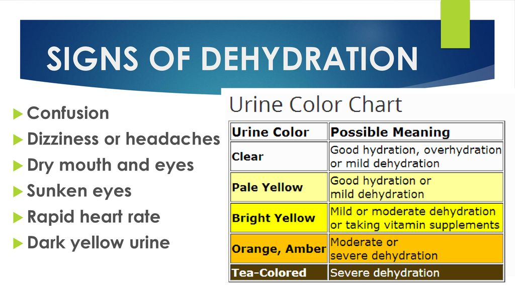 THE IMPORTANCE OF STAYING HYDRATED - ppt download
