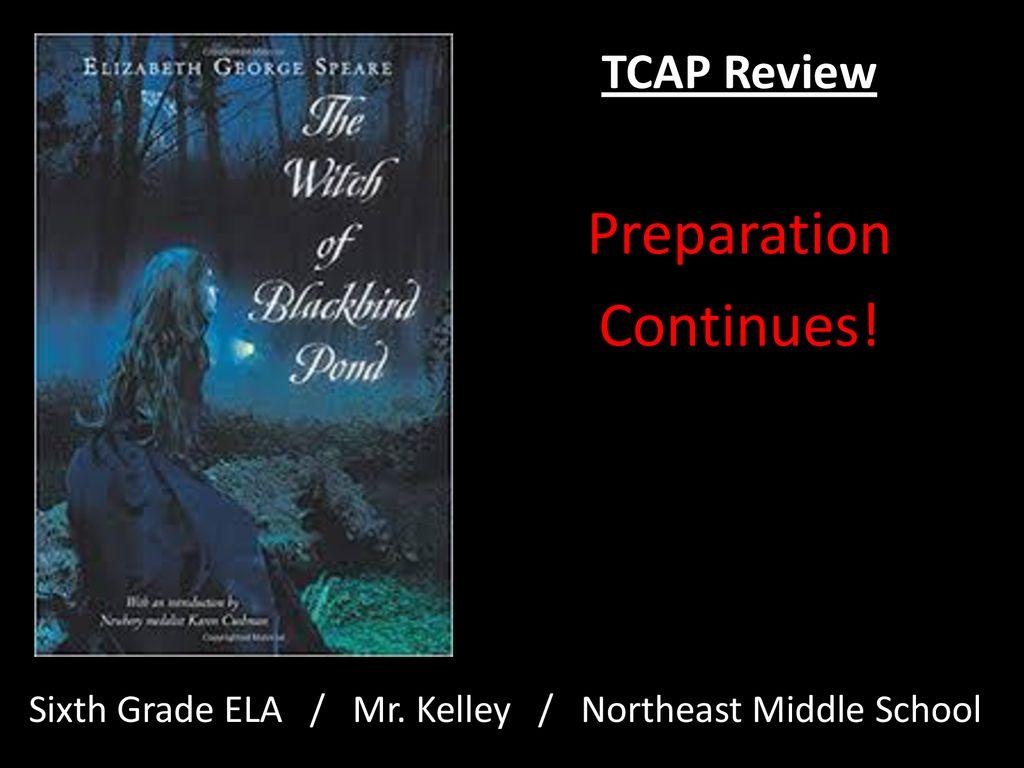 TCAP Review Preparation Continues! - ppt download