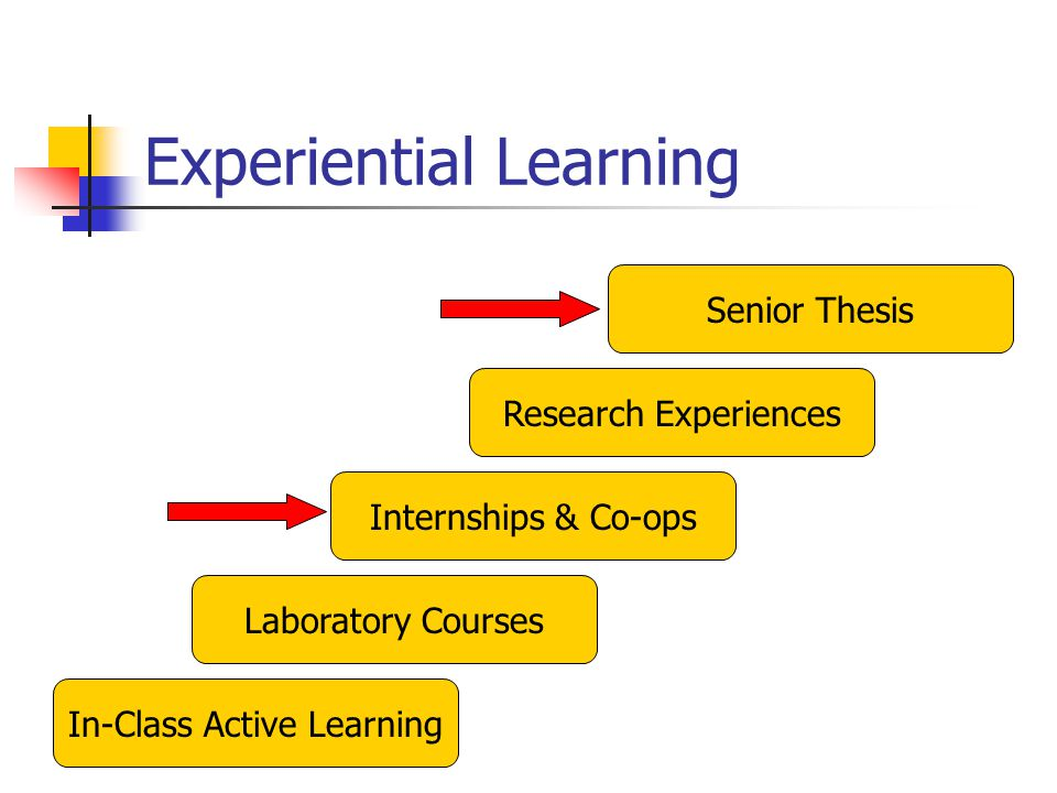Integrated Science and Technology Program - ppt download