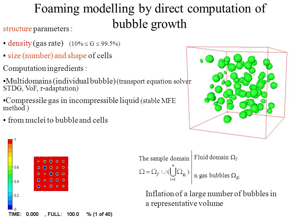 Foaming modelling by direct computation of bubble growth