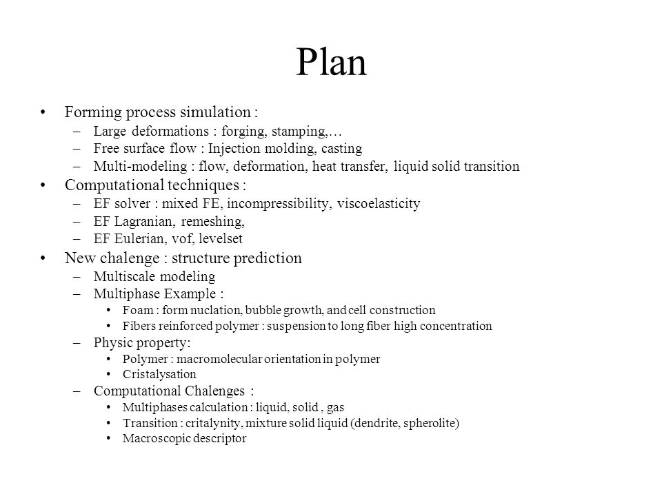 Plan Forming process simulation : Computational techniques :