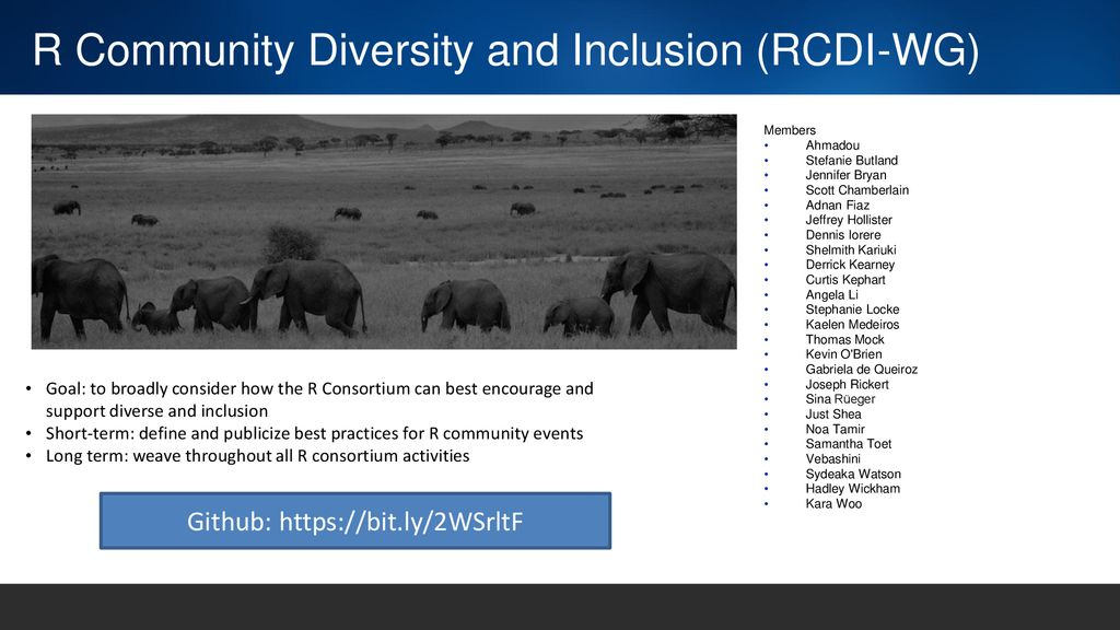 R Community Diversity and Inclusion (RCDI-WG)