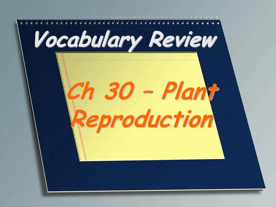 Ch 30 – Plant Reproduction