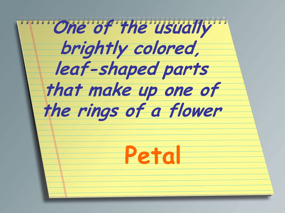 One of the usually brightly colored, leaf-shaped parts that make up one of the rings of a flower