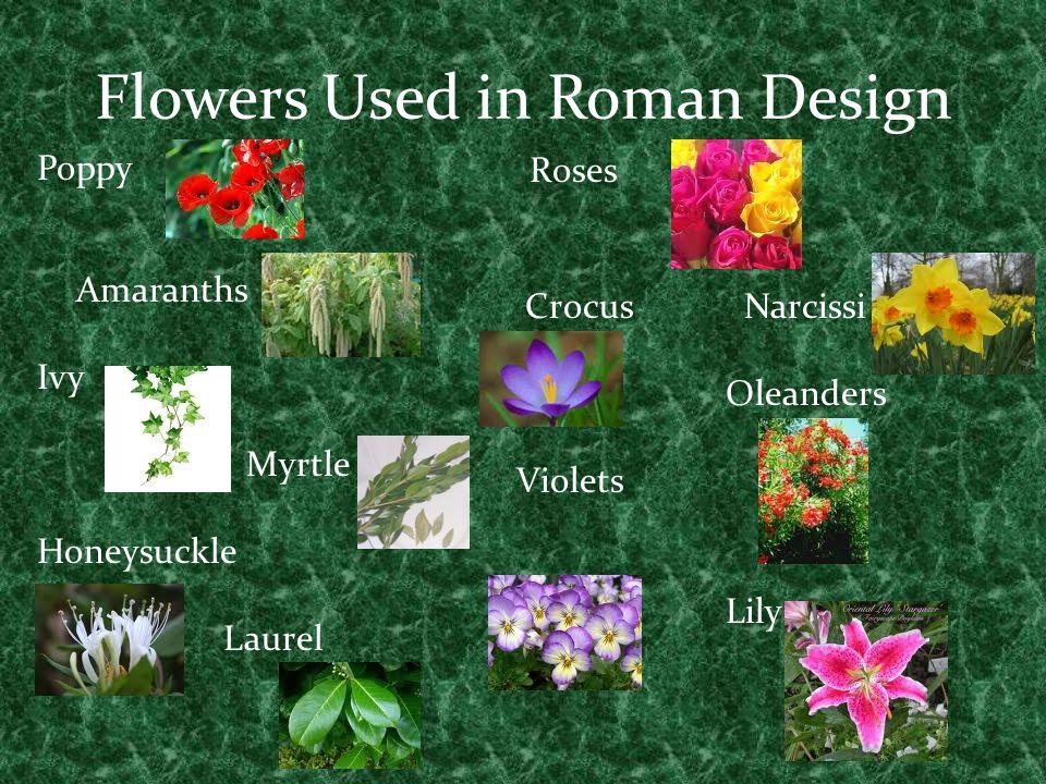 roman period flowers