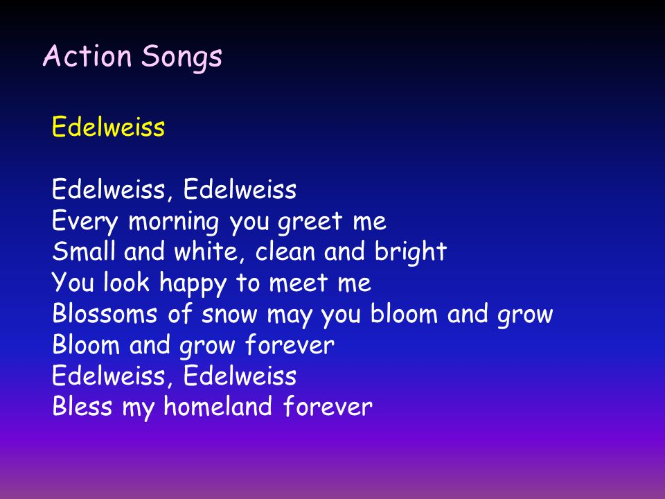 Songs ppt video online download 8 action songs edelweiss edelweiss edelweiss every morning you greet me m4hsunfo