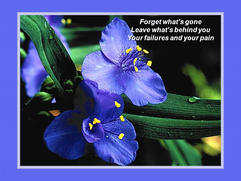 Leave what's behind you Your failures and your pain