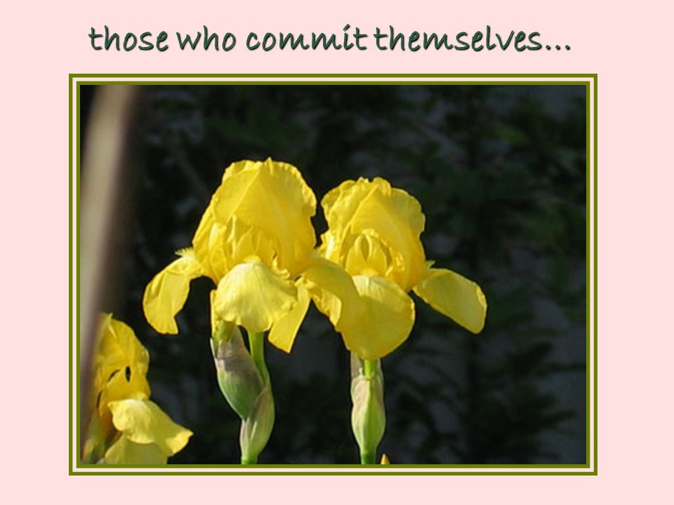 those who commit themselves…