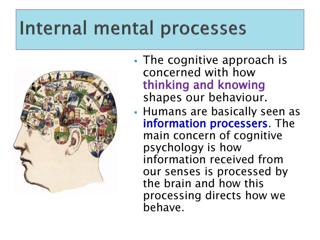 The Cognitive Approach - ppt download