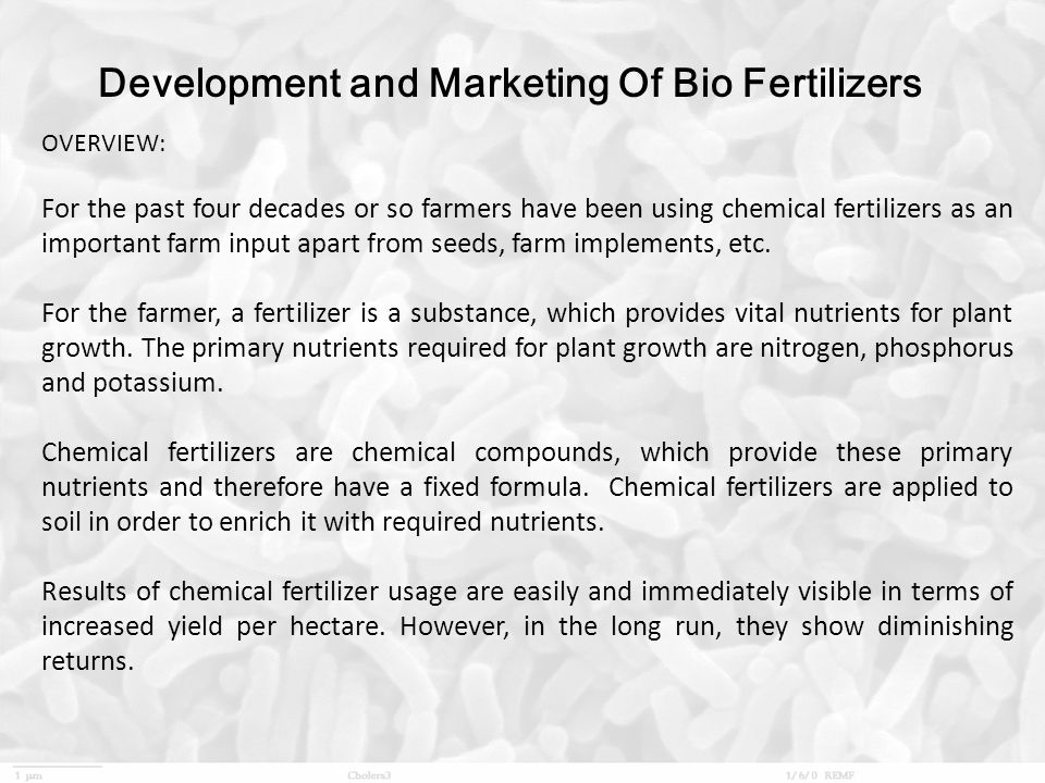 Production process of bio fertilizers ppt download development and marketing of bio fertilizers fandeluxe Images