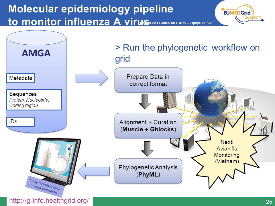 Molecular epidemiology pipeline to monitor influenza A virus