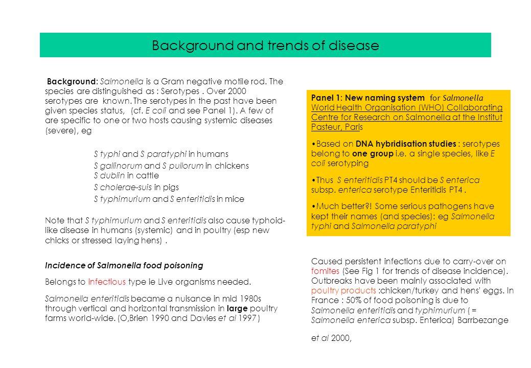 Salmonella Food Poisoning Salmonella Enterica Subs Enterica Ppt