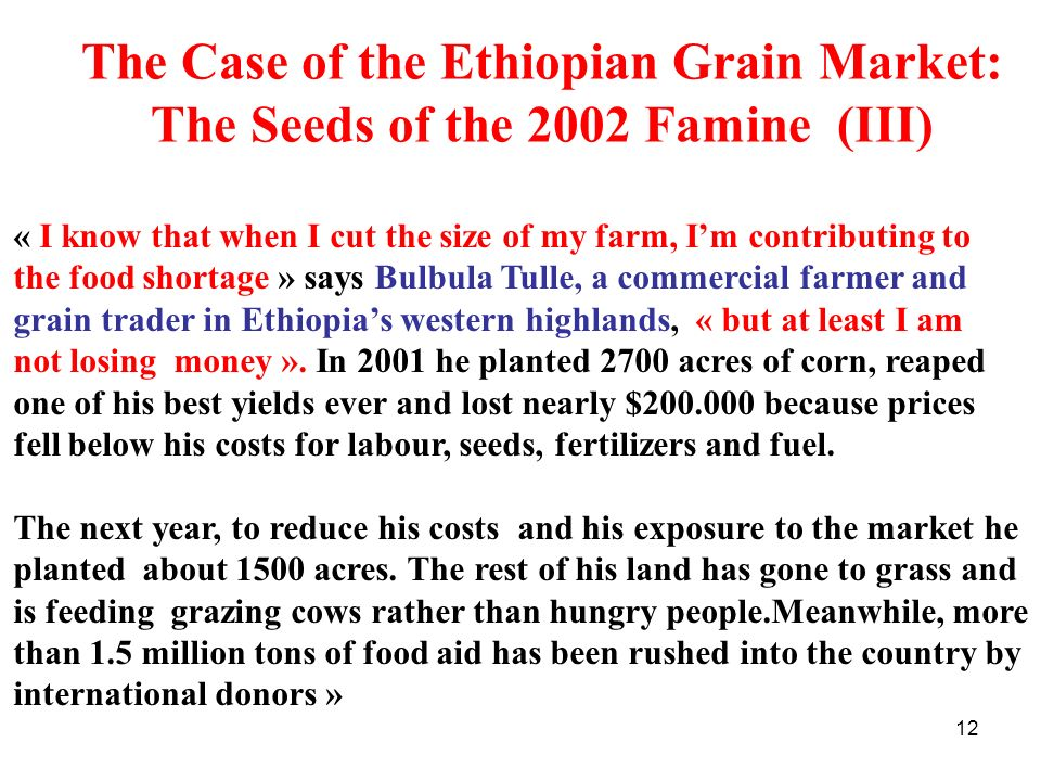 The Case of the Ethiopian Grain Market: The Seeds of the 2002 Famine (III)