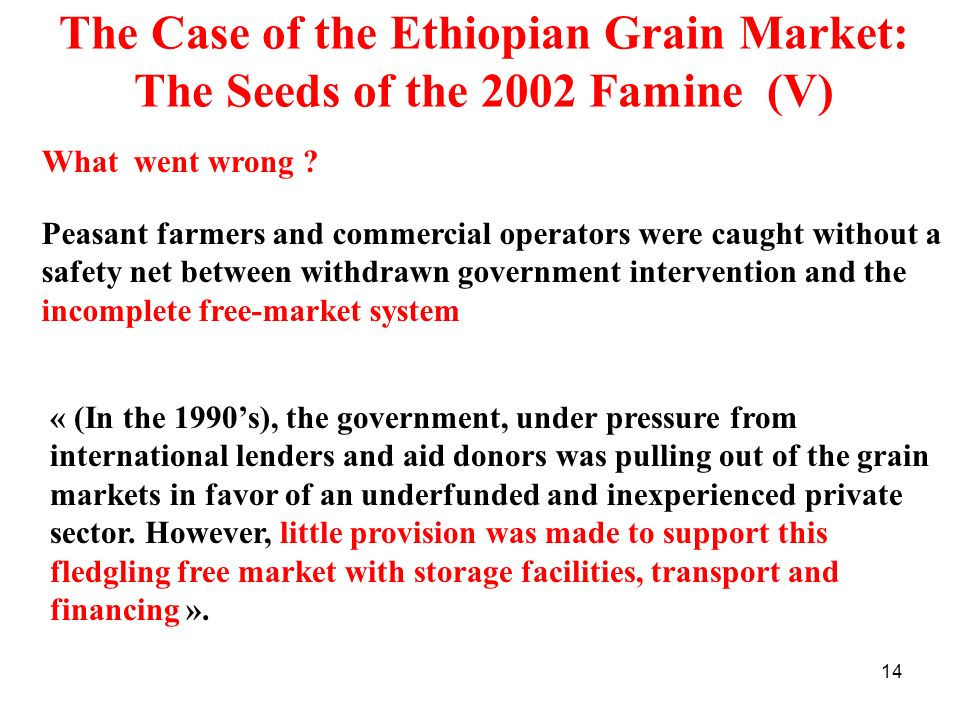 The Case of the Ethiopian Grain Market: The Seeds of the 2002 Famine (V)