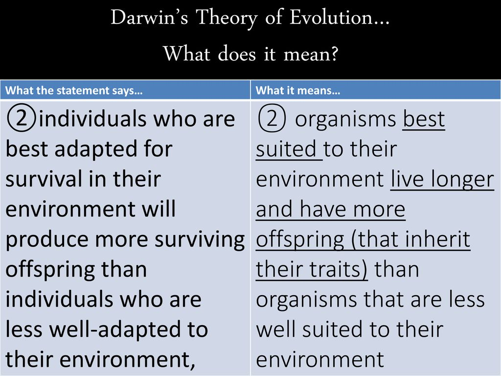 Evolution Notes Part 1 The Theory Of Evolution What Does It Actually Say Thursday Oct 26 Ppt Download