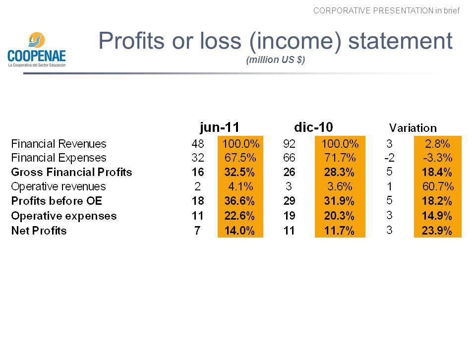 Profits or loss (income) statement (million US $)
